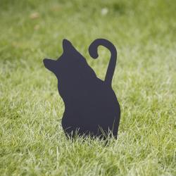 Kot śmieszne reakcje ludzi budzi - Kotka Kredka wbita w trawnik