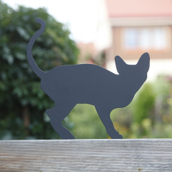 Prezent dla miłośnika kotów - Kot Koreks na płocie