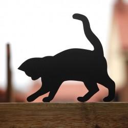 Tosia kot gadżet dla kociarza na płocie