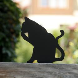 Kot Kredka na płocie