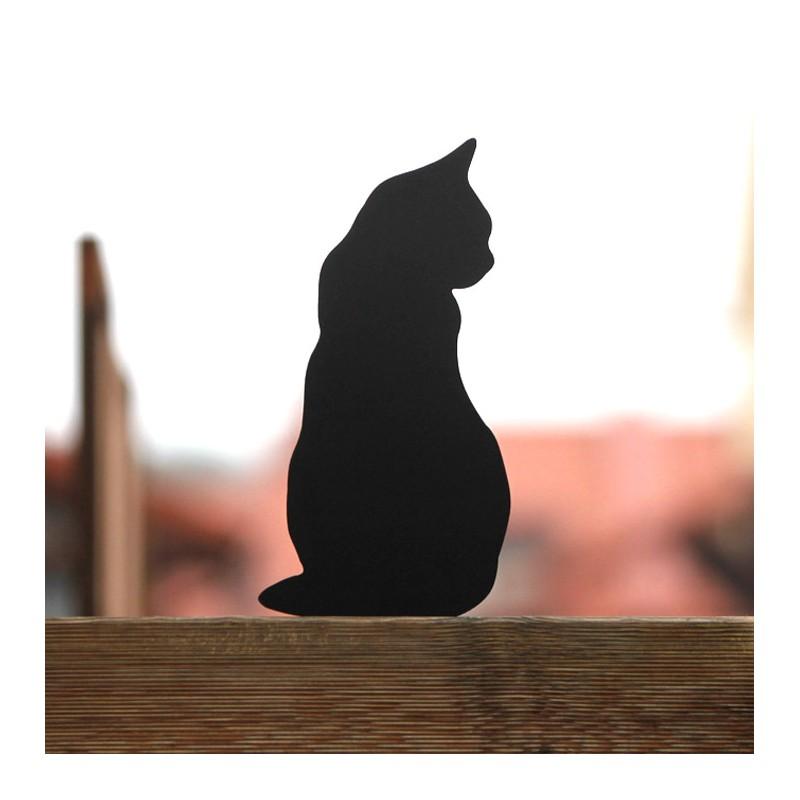 Kot Caryca na płocie