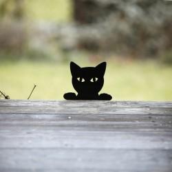 Śmieszny kot Filemon na tarasie