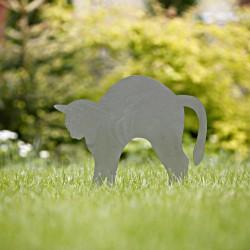 Rdzawy Fuslapa na trawniku