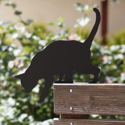 Kot Tola przykręcony na tarasie
