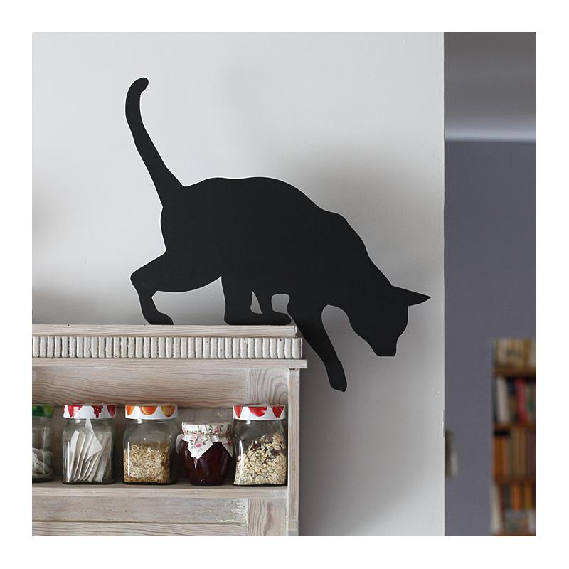 Kot Tola przykręcony do kuchennej półki