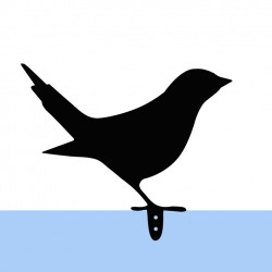 copy of Bird Ćwirek