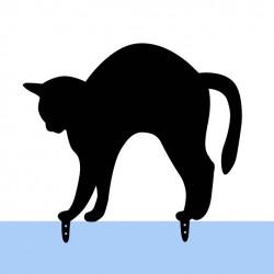 Katze Fuslapa